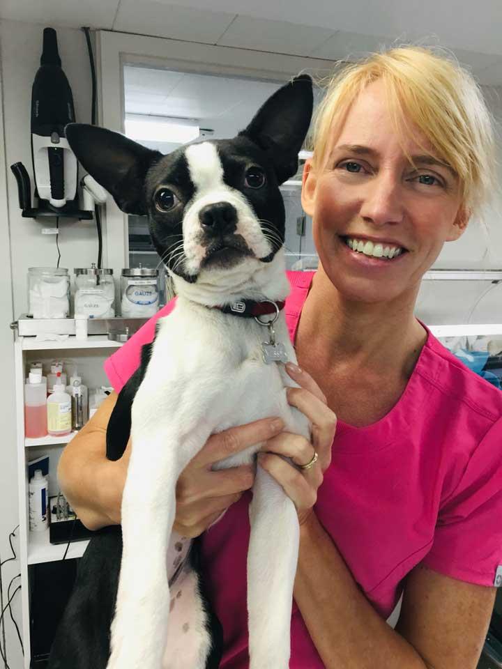 Portrait de Caroline Ferron Bsc.,Tsa – avec un chien noir et blanc dans les mains. Clinique vétérinaire Lachine