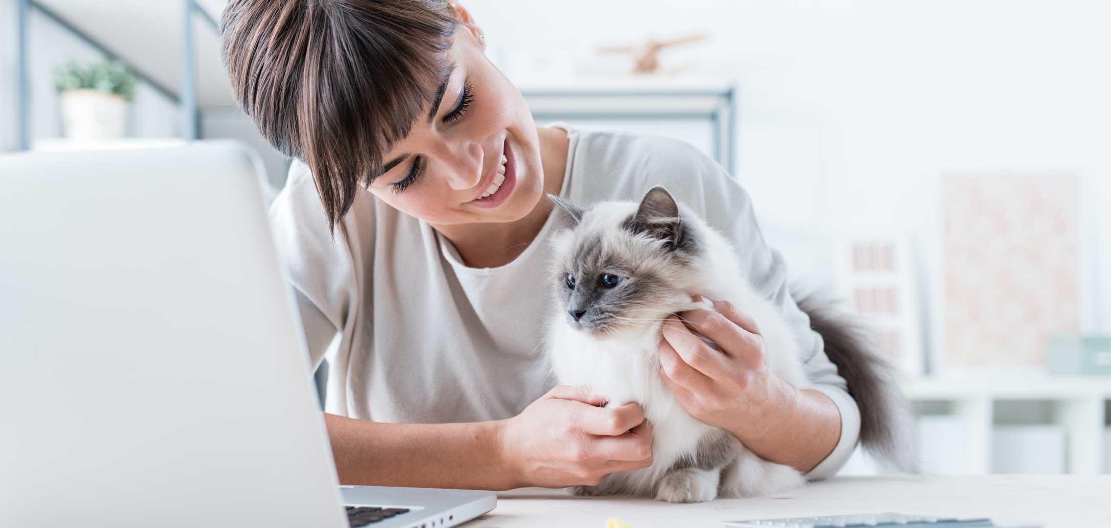 Jeune femme et son chat sur le bureau regardant l'écran de l'ordinateur en train de lui gratter le cou. Clinique vétérinaire Lachine