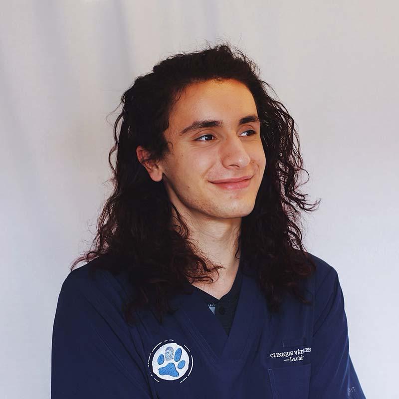 Marco Marcogliese